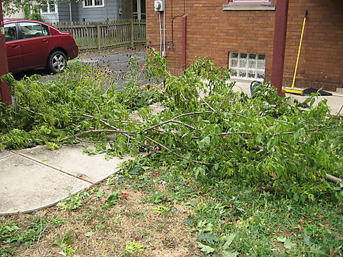 Yard-post-wind